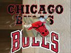 Chicago Bulls Basketball Team Mascot Logo NBA Sticker Decal Vinyl Windy City on eBay