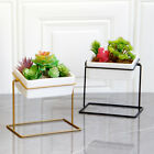 1x Modern Plant Stand with Ceramic Planter Pot Succulent Flower Iron Rack Holder