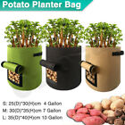 Potato Grow Planter Container Bag Pouch Root Plant Growing Pot Side Window Gn
