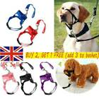 Dog Muzzle Strap Halti Head Collar Stops Nose Reigns Pet Pulling Halter UK