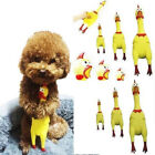 Screaming Rubber Yellow Chicken Pet Dog Toy Squeak Squeaker Chew Puppy Play Gift