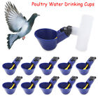 Poultry Water Drinking Cups Plastic Automatic Drinker Chicken Hen Bird Coop Feed