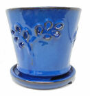 Olive Branch 7 inch Orchid Pot