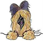 Briard Dog Ladies Tshirt Nightshirt pet kiniart 7531