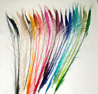"100 Peacock Sword Feathers 30-38"" L Bleached & Dyed 21 colors available"