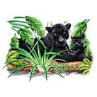 Black Panther and Cub  Tshirt  Sizes/Colors