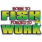 NEW~FUNNY~FISHERMAN~BORN TO FISH~~FORCED TO WORK~~WHITE SLEEVELESS T-SHIRT~S-2XL