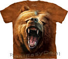 Child GRIZZLY GROWL Bear The Mountain T Shirt All Sizes 4 -14 Years 15-3526