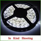 5M 12V 24W 300LEDs 3528 Cool White Flexibility Strip Lighting For Decoration Car