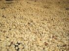Up To 100 lbs Colombian Medellin Supremo SHG Green Coffee Beans, Always Fresh!