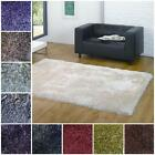 Santa Cruz Luxury Small Extra Large Thick Soft Pile Modern Luxurious Shaggy Rug