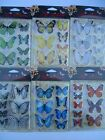 3D BUTTERFLY STICKERS (Choice of 6 Colours) {fixed £1 p&p}