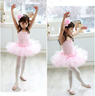 Lovely Girls Baby Kids Party Leotard Ballet Tutu Dance Dress Skirt3-8Y Costume