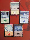 CHOOSE ONE -  EX/NM Coldsnap Snow-Covered Basic Land -  x1 / x4 Sets MTG Cards