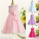 Pinks Christmas Valentine Day Christening Flower Girls Party Dresses SIZE 2-12Y