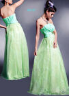 NEW Sz Printed Lace layered Formal Gown Maxi Party Light Green Dress