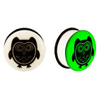 Acrylic GLOW IN THE DARK Owl Single Flared Plugs Ear Earlet Black