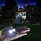 100 LED Berry Lights Wedding Party Table Decor Fairy Floating Ball Glowing Color