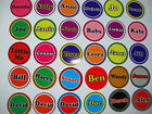 "12 NEW LAWN BOWLS STICKERS 1"" YOUR OWN NAME   CROWN GREEN BOWLS FLAT INDOOR"