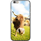 Cow Hard Case For Apple Phone Models