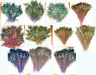 """50 Peacock Eye Feathers 8-15"""" Iridescent STEM DYED  11 colors to choose from"""