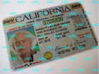 Back to the Future - Custom Made [ Doc Emmett Brown Time Travel License ] BTTF