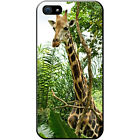 African Giraffe Hard Case For Apple iPhone 5 / 5s