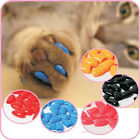 20Pcs Soft Pet Cat Paws Grooming Off Nail Claw Contrlo Cap+Adhesive Glue New YW
