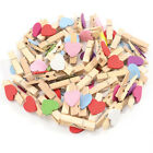 50-100 Mini Wooden Pegs Crafting Craft Pegs Assorted Colours