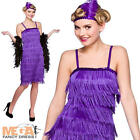 Purple Fringe Flapper 1920s 30s Ladies Fancy Dress Charleston Womens Costume