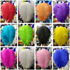 Wholesale 5-100 pcs gorgeous natural ostrich feathers 6-24 inch / 15-60 cm
