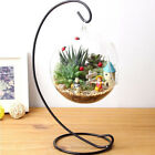 Hanging Glass Flowers Plant Vase Stand Holder Terrarium Container Wedding Decor