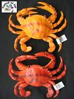 Fake Crab Life Size - Realistic Toy Prop - 2 Colours Available - Window Display