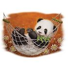 Hammock Panda  Tshirt   Sizes/Colors