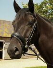 Heritage English Leather Comfort Bridle with Flash Noseband for Horse or Pony