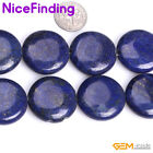 Coin Blue Lapis Lazuli Gemstone Beads For Jewelry Making Loose Beads Strand 15""