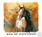 Sun Of Happiness  Horse Sweatshirt  Sizes/Colors
