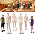 Kyпить Full Body Dummy Mannequin Female Male Shop Window Showcase Display  Dressmaker на еВаy.соm