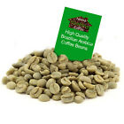 750g Brazil Santos Raw Arabica Green Coffee Beans for Home Roasting. Free P&P