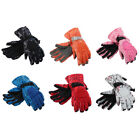 Outdoor Cycling Biking Snowmobile Snowboard Ski Gloves Athletic Mittens