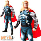 Deluxe Thor Mens Fancy Dress Avengers Marvel Comic Superhero Adults Costume New
