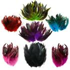 15-20 CM Goose Cock Feathers DIY Dreamcatcher Decor 6-8 inches SY