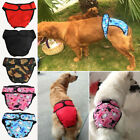 UK Reusable Washable Dog Diaper Physiological Pants Female Big Dog size L, XL TY