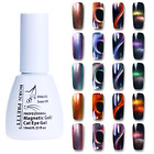 10ml Nail Art Holographic Chameleon Magnetic Cat Eye Soak Off UV Gel Polish DIY