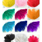 "Ostrich Feathers Packs of 10 (Approx 8""-11"" Long). Perfect for Art & Crafts"