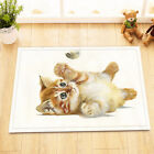 72x72'' Watercolor Cat and Feather Bathroom Shower Curtain Waterproof 12 Hooks