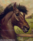Chestnut Horse Illustration ~ Counted Cross Stitch Pattern