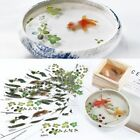 5/10Pcs 3D Leaves/Goldfish Clear Water Film Sticker For Resin Painting Jewely