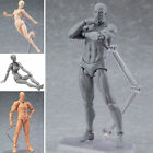 2.0 Body Kun Doll PVC Body-Chan DX Action Figure Model Drawing For SHF She/he