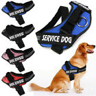 Kyпить Service Vest Dog Harness Adjustable Patches Reflective Small Large Medium S-2XL на еВаy.соm
